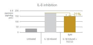 EGCG2が頭皮の炎症を抑える効果