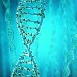 SNP(スニップ)検査って?遺伝子を調べて薄毛改善ができる!?