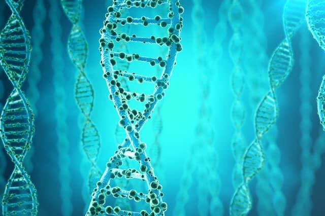 遺伝子のイメージ